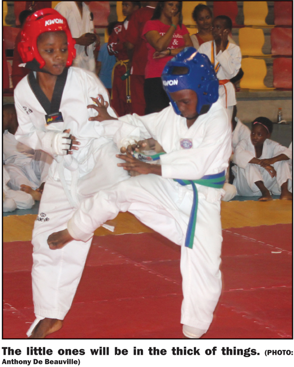 St. Lucia Martial Arts Open March 28