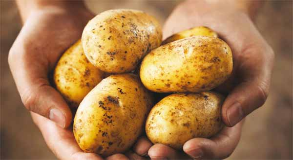 patatoe