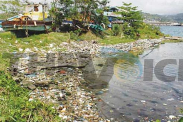 Plastic bottles and other debris items washed ashore near Tapion, Castries. [Photo: Stan Bishop]