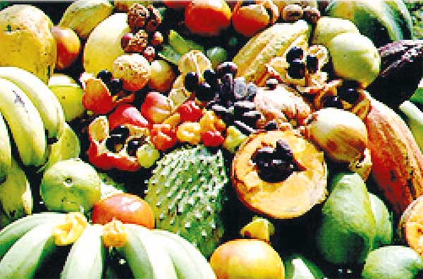 Image of fruits found in St. Lucia.