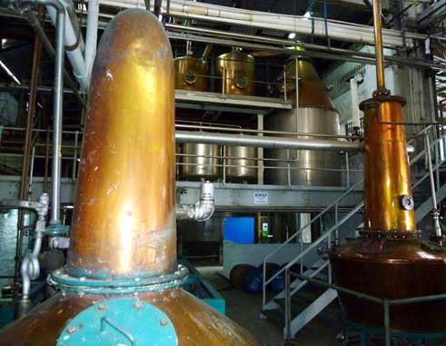 Image of inside St. Lucia Distillers plant at Roseau.