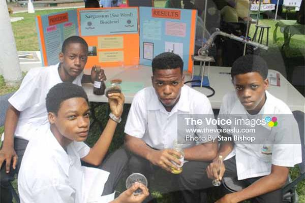 Image: These youngsters from St. Mary's College explore the business potential that lies in converting Sargassum (seaweed) into biodiesel [PHOTO: Stan Bishop]