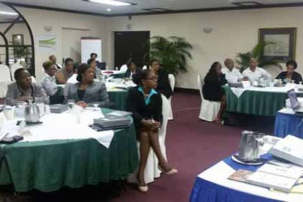 Participants receive productivity training.
