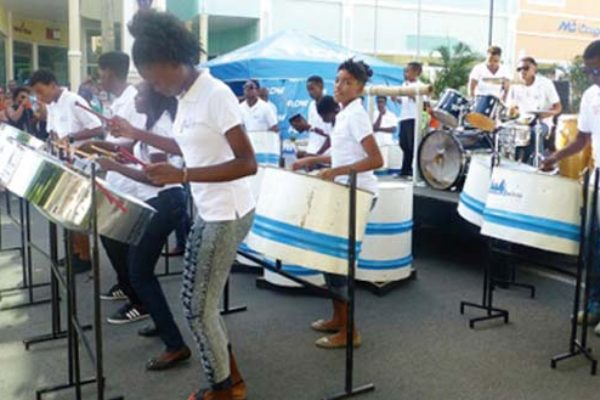 Image: Laborie Steel Orchestra enjoys performance at Artists Market