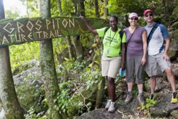 Image: The Gros Piton Nature trail