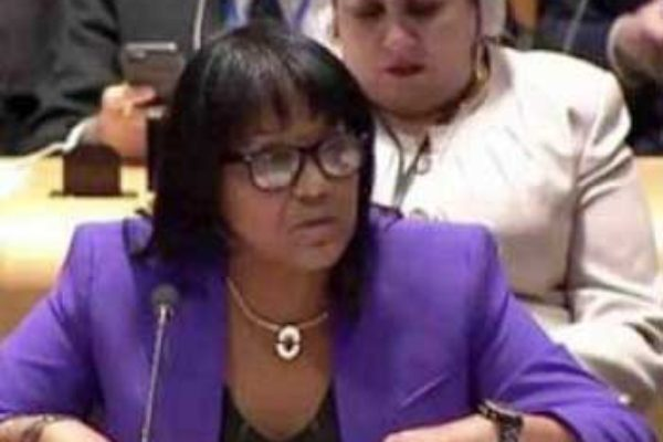 Image of Cuban Ambassador to the UN, Anayansi Rodríguez, denounced the current U.S. administration's plans to tighten the economic, commercial and financial blockade, repeatedly condemned by the international community. (Photo: Cubaminrex)
