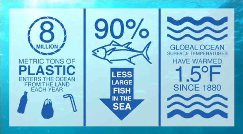 Image: 8 million metric tonnes of plastic enter the Ocean from the land each year.