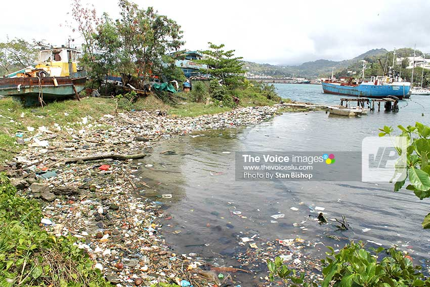 Image: Garbage accumulated in the Castries Harbour near Tapion. [PHOTO: Stan Bishop]