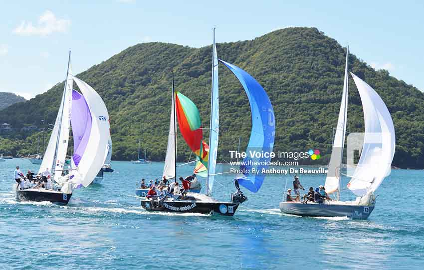 Image: Some of the participants in the J24 race. (Photo: Anthony De Beauville)