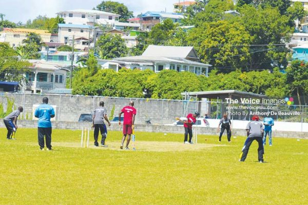 Image of some of the cricket action at the Woulelaba festival. (PHOTO: Anthony De Beauville)