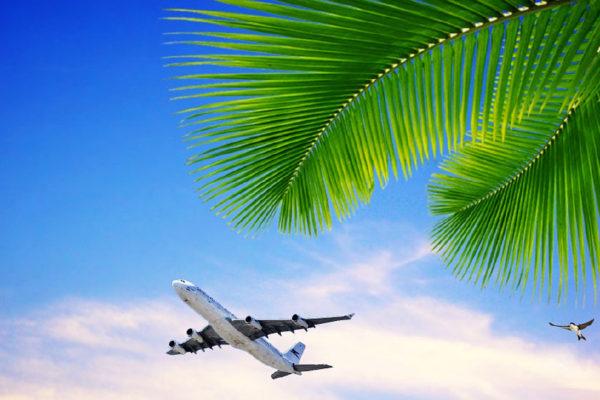 Air Travel illustration