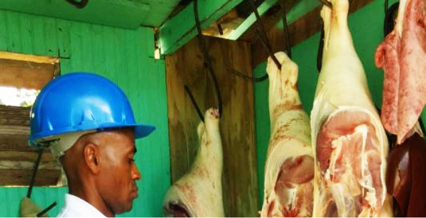 Image of a meat inspection under way