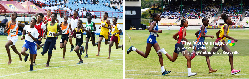 Image: (L-R) Some of the faces that will be on show at the various inter house sports meets leading to the northern and southern qualifiers in March. (PHOTO: Anthony De Beauville)
