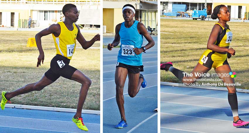 Image of some of the athletes that will be on show during the championship this weekend. PHOTO: Anthony De Beauville