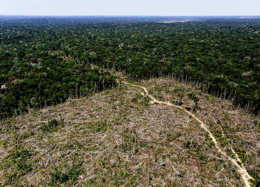 An aerial view shows deforested land in the southern region of the state of Amazonas, Brazil, July 27, 2017.