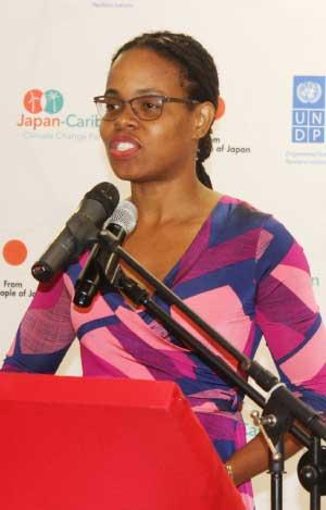 Image of Danielle Evanson, UNDP Programme Manager.