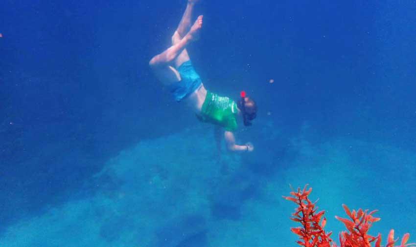 Image: Marine Biology student exploring the magic of the deep, blue sea.