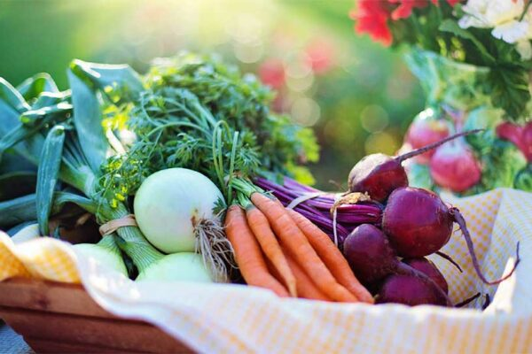 Image: Backyard gardening is one way that you can ensure food is always available for your family.
