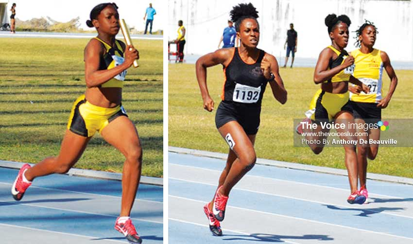 Image: Some of the female performers at National Juniors/ Carifta TRIALS. (PHOTO: Anthony De Beauville)