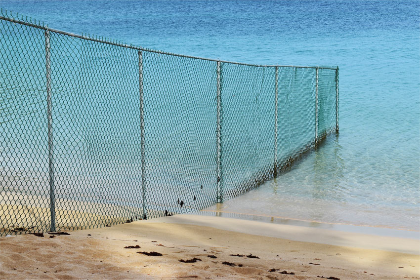 Image of a fence recently constructed along the Reduit Beach has attracted much public scrutiny.